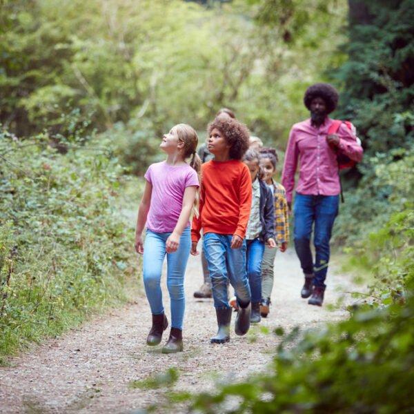 Kids take a hike on a nature trail.